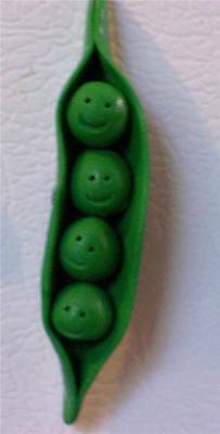 Four Peas In A Pod Magnet ~Quadruplets or Family of 4