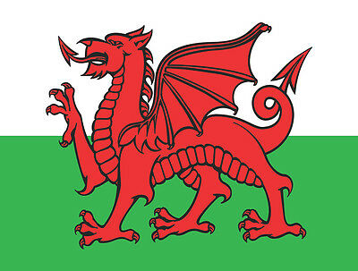 Large 5Ft X 3Ft (15 Square Feet) Welsh Dragon / Wales Fabric Flag Sport Pub