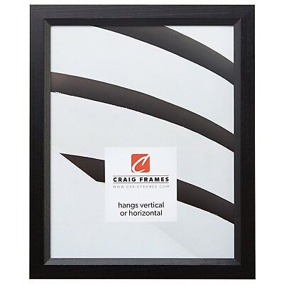 Craig Frames Economy Black, Simple Hardwood Picture Frame