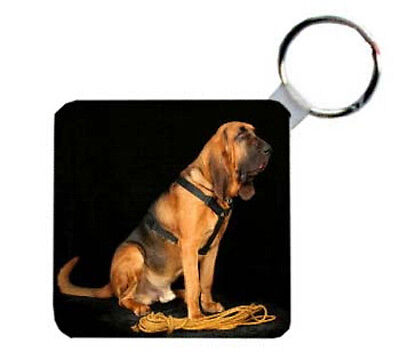 Bloodhound       Personalized   Breed   Key   Chain