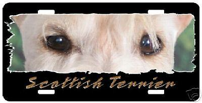 """Scottish Terrier  wheaten """" The Eyes Have It """"  Plate"""