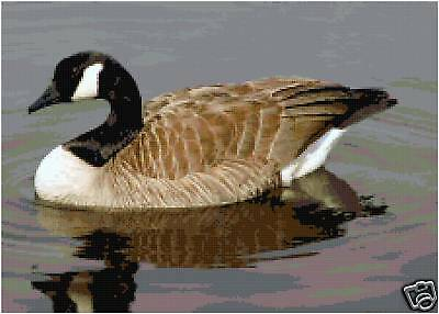 Canadian Goose Geese Counted Cross Stitch Pattern