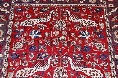 c1930s ANTIQUE PICTORAL BEAUTY PERSIAN KASHAN RUG 3.4x6.2 DETAILED BIRD SUBJECTS