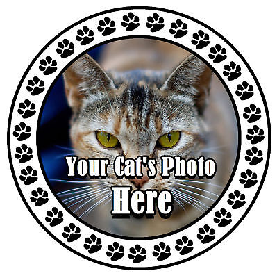 Your Cats Photo Here - Fun Car Tax Disc Holder - New