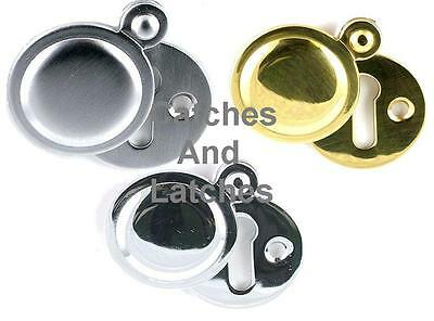 Keyhole Plate with Swivel Cover Escutcheon for Doors Chrome or Brass Plated