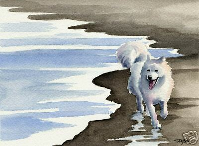 SAMOYED AT THE BEACH Painting ART 11 X 14 Signed DJR