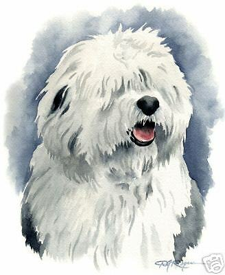 OLD ENGLISH SHEEPDOG Painting ART 11 X 14 LARGE by DJR