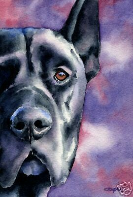 BLACK GREAT DANE Painting Dog ART 11 X 14 Signed DJR