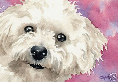 BICHON FRISE Painting Dog ART 11 X 14 LARGE Signed DJR