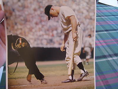 1956 Mickey Mantle New York Yankees Baseball Photo