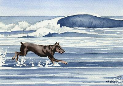 DOBERMAN PINSCHER Painting Dog ART 11 X 14 Signed DJR