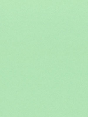 50 Sheets - Green Lightweight Cardstock - 67#  8.5 x 11