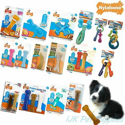 Nylabone Puppy Teething tough dental dog toys Chew Chews - New Designs