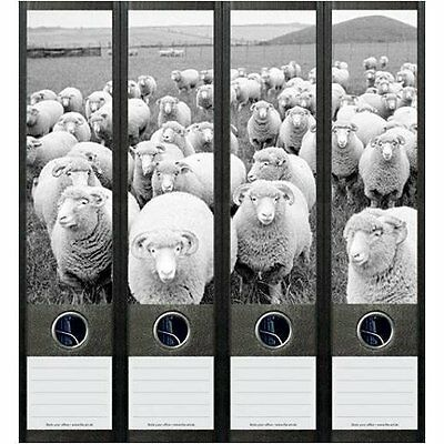 File Art 4 Design Ordner-Etiketten Sheep.....................................049