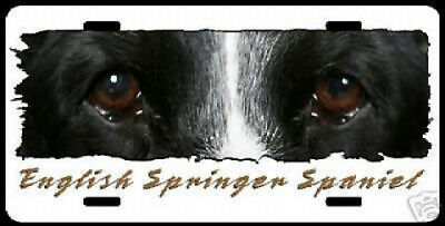 "English Springer Spaniel     ""The Eyes Have It""   License Plate"