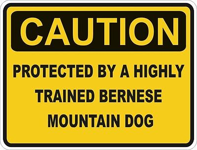 1x CAUTION PROTECTED BY BERNESE MOUNTAIN DOG WARNING FUNNY STICKER DOG PET DECAL