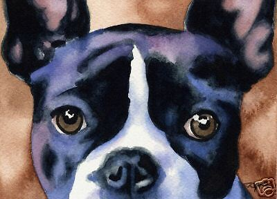 BOSTON TERRIER Art Print Painting 8 x 10 Signed by Watercolor Artist DJR w/COA