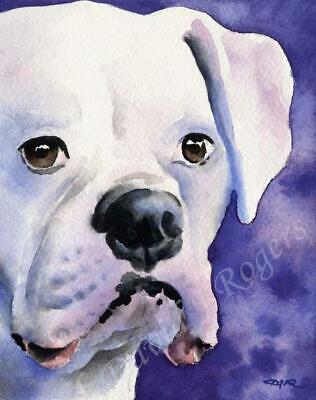 WHITE BOXER Painting DOG 8 x 10 Art Print Signed Artist DJR