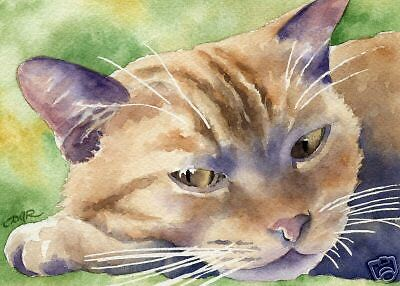 ORANGE TABBY CAT Watercolor Painting 8 x 10 Art Print Signed DJR