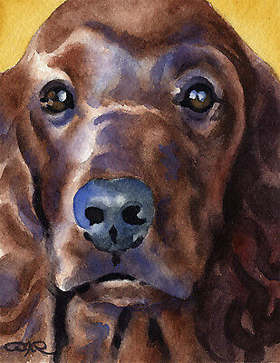IRISH SETTER ART Print Dog Watercolor Painting 8 x 10 Signed by Artist DJR w/COA