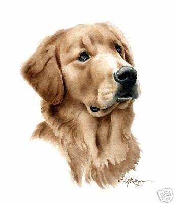 GOLDEN RETRIEVER ART Print DOG Watercolor 8 x 10 Signed by Artist DJR w/COA
