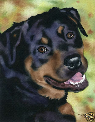 ROTTWEILER Dog Watercolor Painting 8 x 10 ART Print Signed by Artist DJR