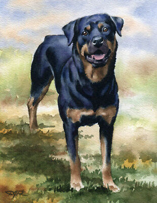ROTTWEILER ART Print DOG Watercolor Painting 8 x 10 Signed by Artist DJR w/COA