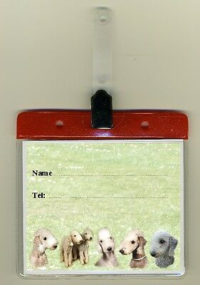Bedlington Terrier Cage Identity Badge for Dog Show Crates & Cages by Starprint