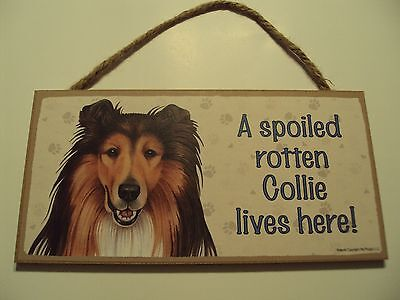 "Collie 5""x10"" Wooden Dog Sign,A Spoiled Rotten Collie Lives Here"