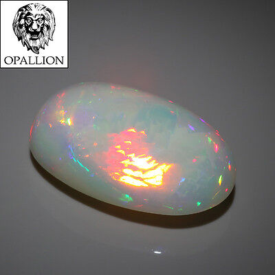 RARE : ENORME Opale Blanche WELO cabochon / ETHIOPIE / 16,76 cts !!! VIDEO !