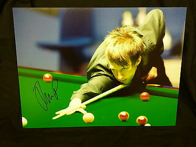 Judd Trump Signed Snooker Large Photograph C