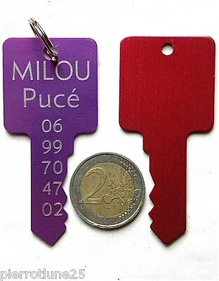 Medaille Gravee Chien Cle Clef Rouge Gravure Offerte