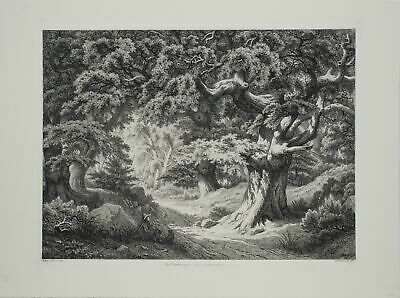 Eugene Blery-Le Charlemaagne (Foret de Fontainblue)-Etching