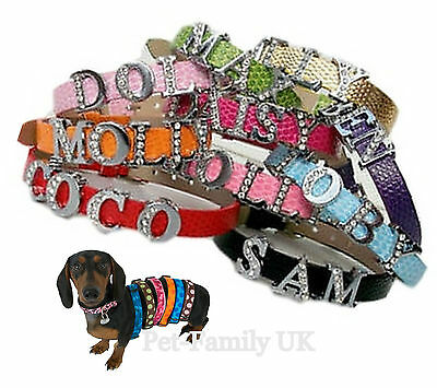 Personalised  puppy kittens small pet collar size XXS. Up to 5 letters!