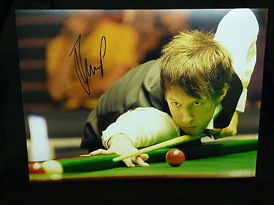 Judd Trump Signed Snooker Large Photograph D