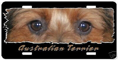 "Australian Terrier "" The Eyes Have It "" License Plate"