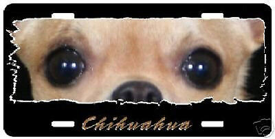 """Chihuahua  # 2  """" The Eyes Have It """"  License  Plate"""
