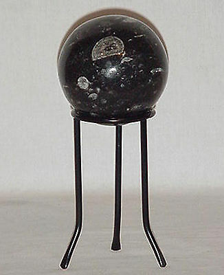Natural Orthoceras Sphere 1 Pound 14 Ounces With Stand