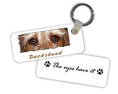 Dachshund  Wirehaired  # 1   The  Eyes Have It   Key  Chain