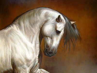 "Dream-art Oil painting art animal white horse head - handpainted canvas 24""x36"""