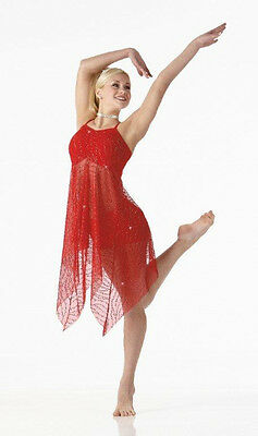 Contemporary Christmas Lyrical Ballet Dance Costume Dress Child Large