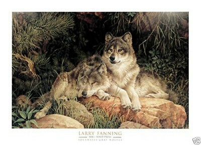 Larry Fanning Soulmates Wildlife Wolf Wolves Art Print Poster 36x26
