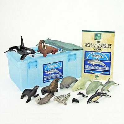 NEW 13 Marine Mammals Dolphins Seals etc Figure Box Set COLORATA Only in JAPAN
