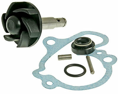 Yamaha TZR 50cc AM6 post 2003 Water Pump Repair Kit