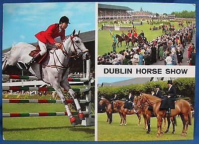Vintage Dublin Horse Show Ireland Color Real Photo Print Postcard Hinde 1970s