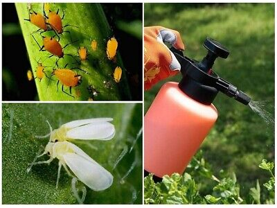 Bug Killer Tablet - Plant Protection, Kills 52 Insects