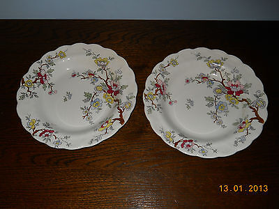 2 x FABULOUS VINTAGE BOOTHS CHINA SCALLOPED DISH 'CHINESE TREE' DESIGN (46)