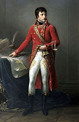 Art Oil painting Male portrait Napoleon as first consul in Red with Sword canvas