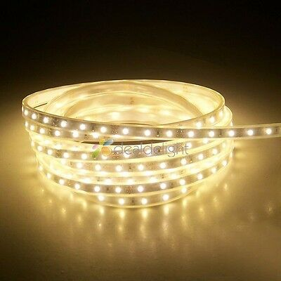5M IP66 Silicone Tube Waterproof 5050 SMD 300LEDs Warm White Color LED Strip