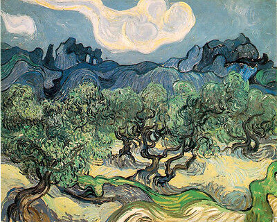 Oil painting Vincent Van Gogh - Olive Trees with the Alpilles in the Background